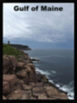 Gulf of Maine, Acadia National Park