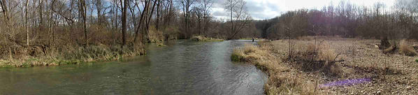 Pool near Lane Spring on Little Piney Creek Trout Fishing