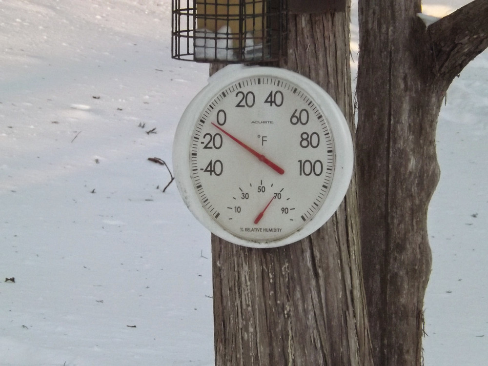 Thermometer on cedar tree shows January below zero temps