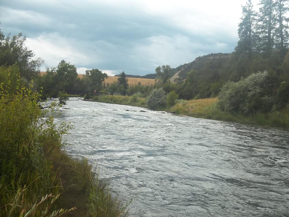 Uncompaghre River in SW Colorado