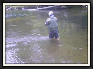 fishing hunting camping