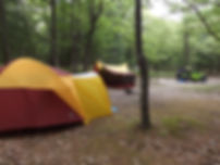 Lake Michgn Recreatin Area Campground