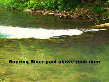 Roaring River Pool with trout