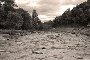 West Branch Ausable River Fishing