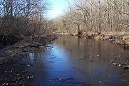 Blue Springs Creek | Missouri | Wild Trout Fishing