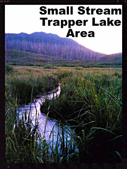 Small stream Trapper's Lake