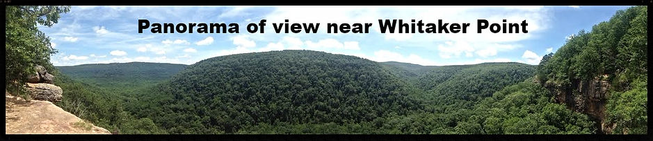 Whitaker Point Panorama, Buffalo River National Scenic Riverway