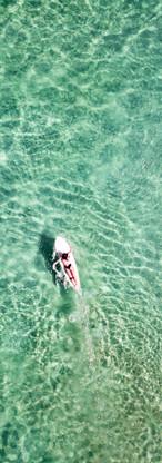 Surfer Girl Lone.JPG