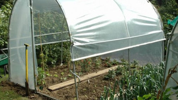 """Serre """"Tomatière"""" traditionnelle porte demi pignon - largeur 2,40m - ø 30 - AL"""