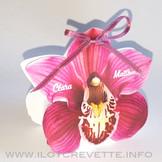 boite-orchidée.jpg
