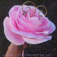 portealliance-rose.jpg