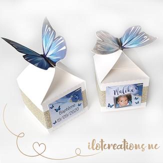 boites-papillons.jpg
