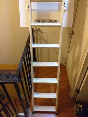 escalera extendida.jpeg