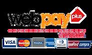 webpay (1).png