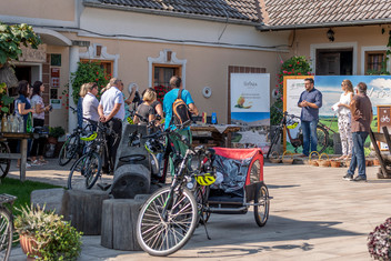 Z E-kolesom po Slovenskih goricah!