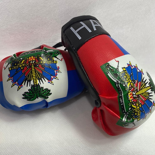 Haiti Stole My Heart mini boxing gloves
