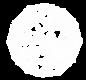 WAI logo white.png