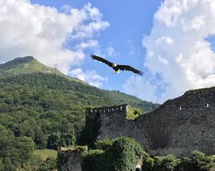 Le donjon des aigles à Beaucens ❤️.jpg