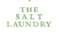 salt laundry logo