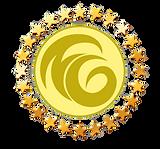 Лого со звездами 1.png