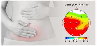 Digestion Button.jpg