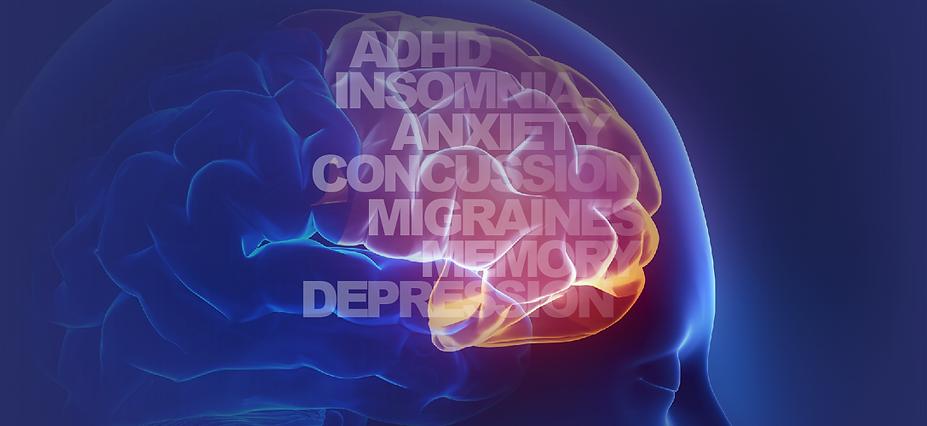 Home Scree Brain Image.png