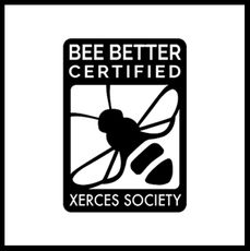 Bee Better Certification