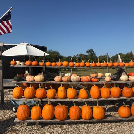 Pumpkin: Fall's Latest Superfood