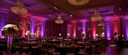 Amazing Custom Uplighting Packages!
