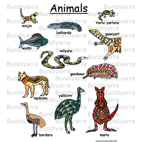 Wajarri Animals