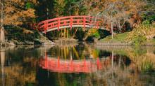לעבור את הגשר