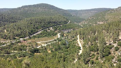 אימון זוגי בצור הדסה, ליד ירושלים
