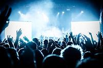 ライブ音楽祭でのコンサートの観客