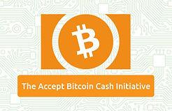 accept-bitcoin-cash-696x449.jpg