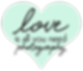 Love Is All You Need Photography Logo