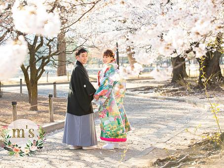 桜の時期の前撮り