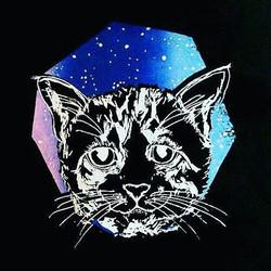 Space cat! _Siebdruck Liebe. Katzen Liebe
