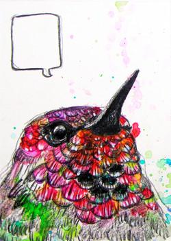 littlebird1.jpg