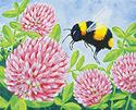 Bee & Clover.webp