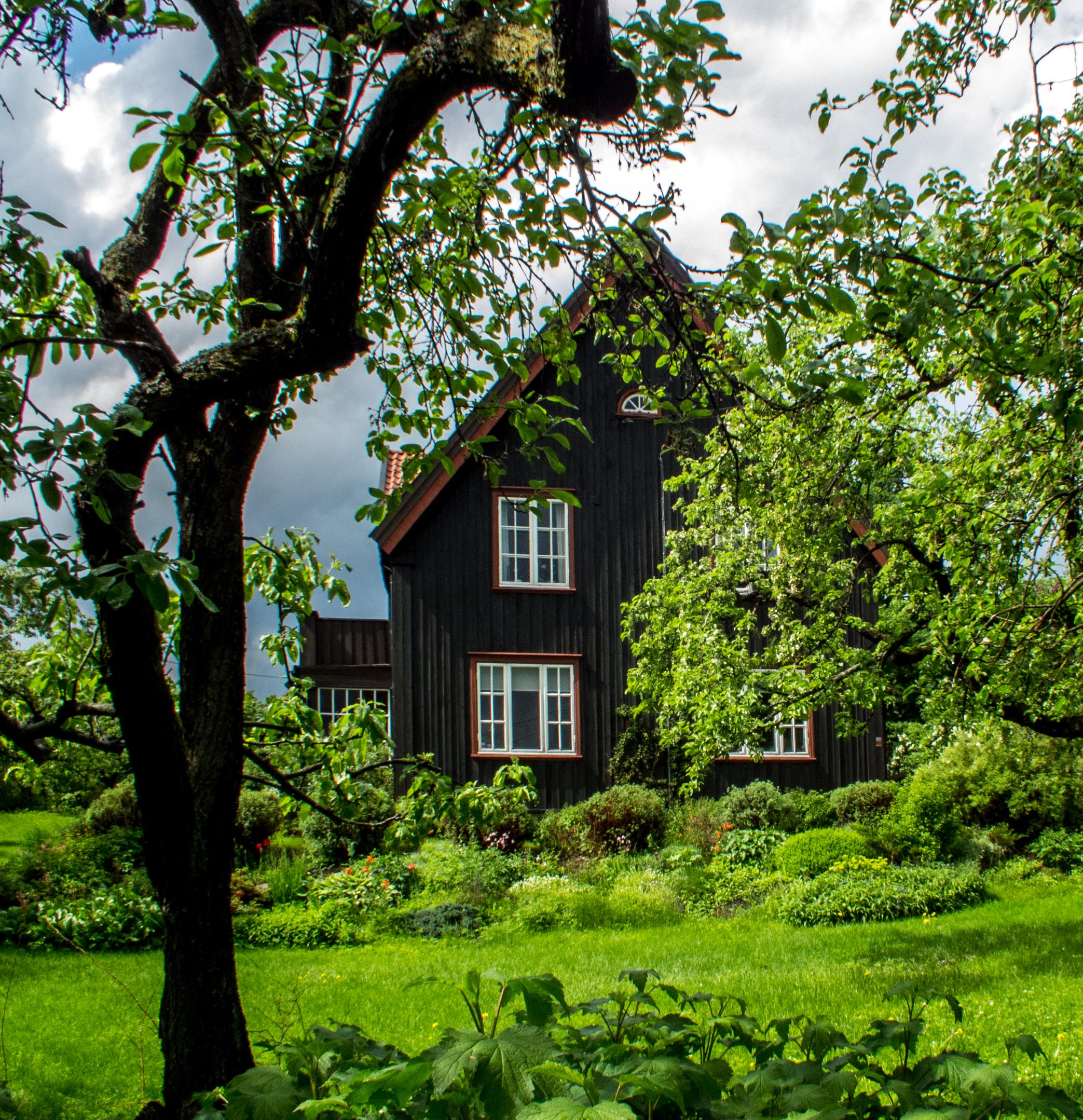 Norway 304