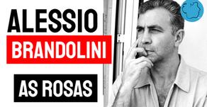 Alessio Brandolini - Poema As Rosas   Poesia Italiana