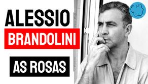 Alessio Brandolini - Poema As Rosas | Poesia Italiana