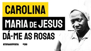 Carolina Maria de Jesus - Poema Dá-me As Rosas   Poesia Brasileira