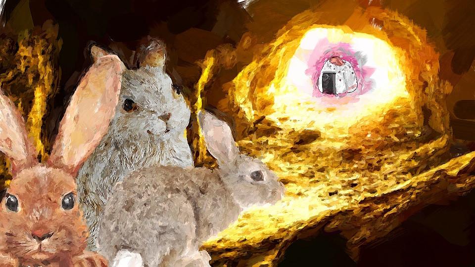 Omusubi rolante coelhos