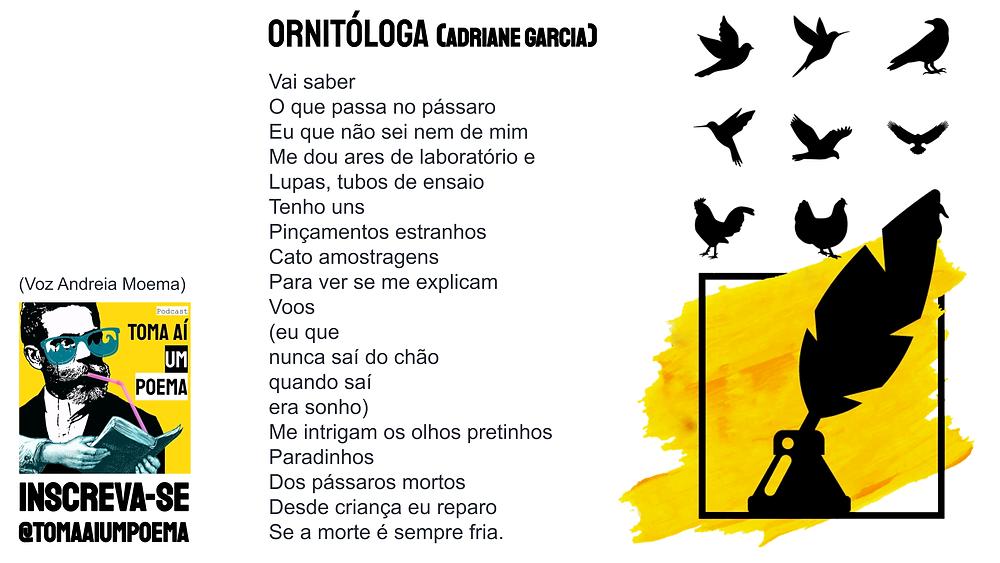 poesia brasileira contemporanea adriane garcia