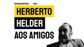 Herberto Helder - Aos Amigos | Poesia Portuguesa