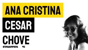 Ana Cristina Cesar - Poema Chove   Poesia Brasileira