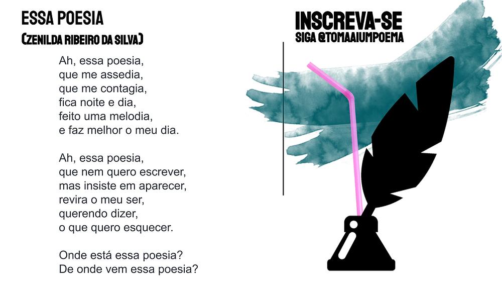 nova poesia brasileira zenilda ribeiro da silva