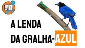 A Lenda da Gralha Azul - Jéssica Iancoski | Folclore Paraná