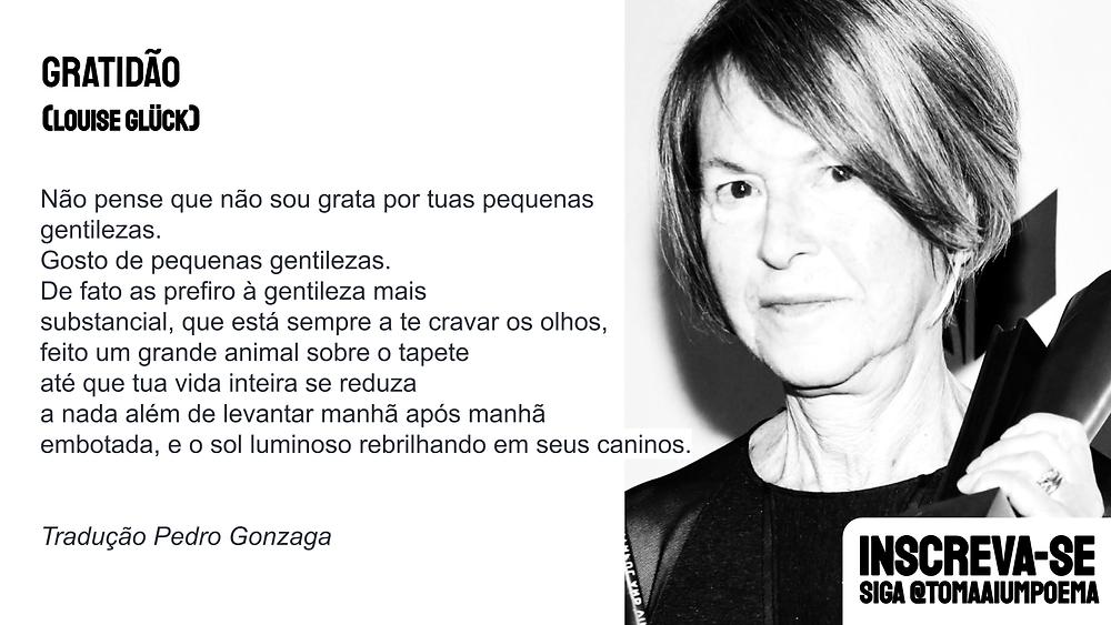 Louise Gluck poesia literatura brasileira